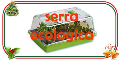 la serra ecologica per bambini è un regalo di Natale educativo e scientifico