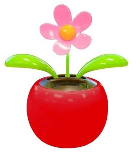 fiore danzante in colore rosa